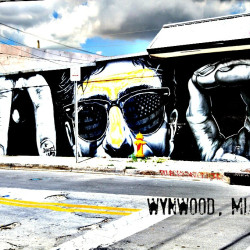 wynwood street art miami